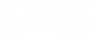 Логотип Solgar_2